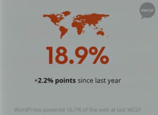 WordPress 18.9%