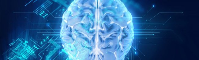ARM Otak