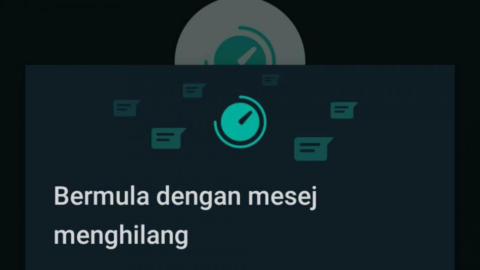 WhatsApp Menghilang